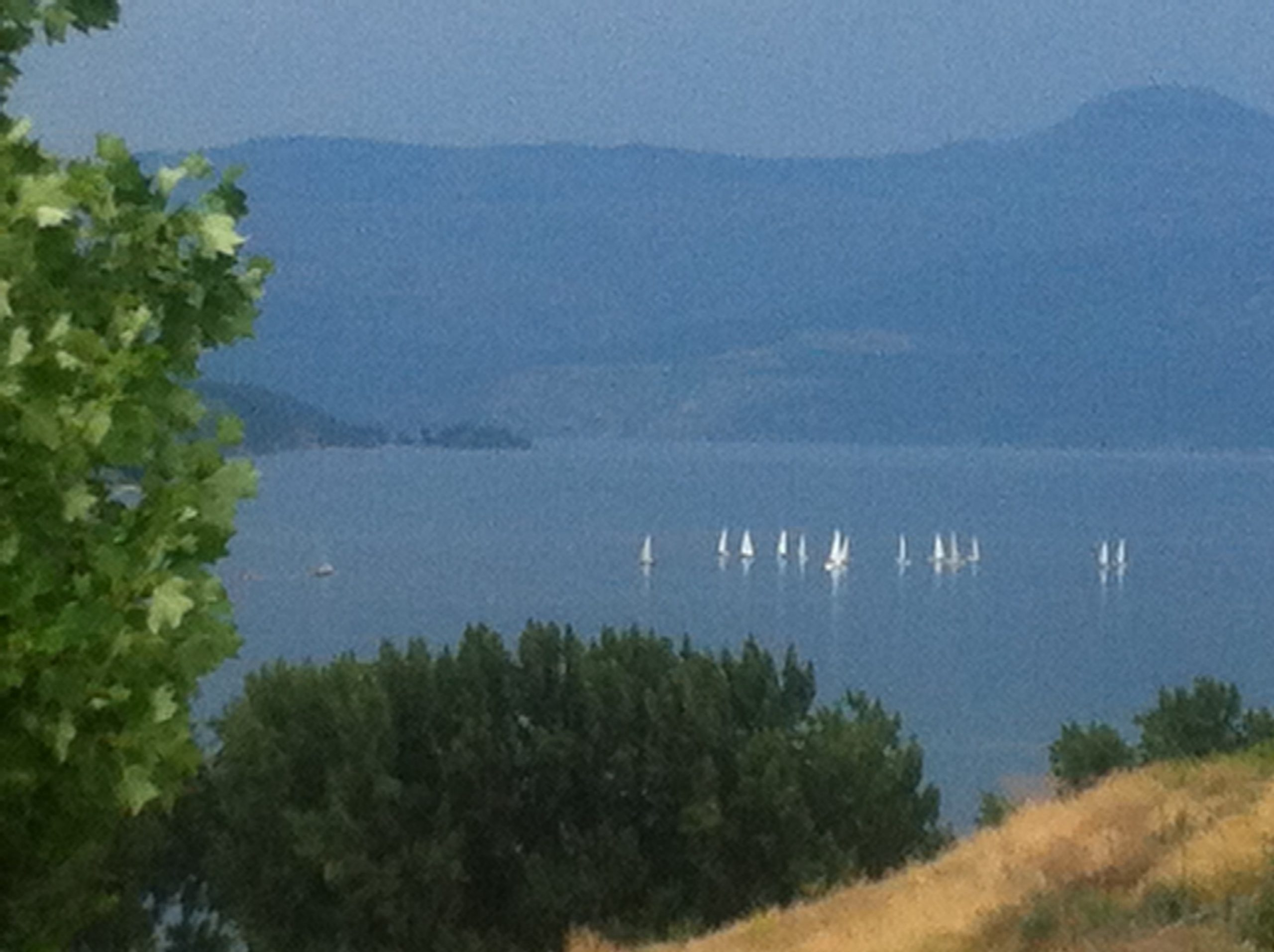 Microgreens farm in Vernon - view from the Okanagan Lake