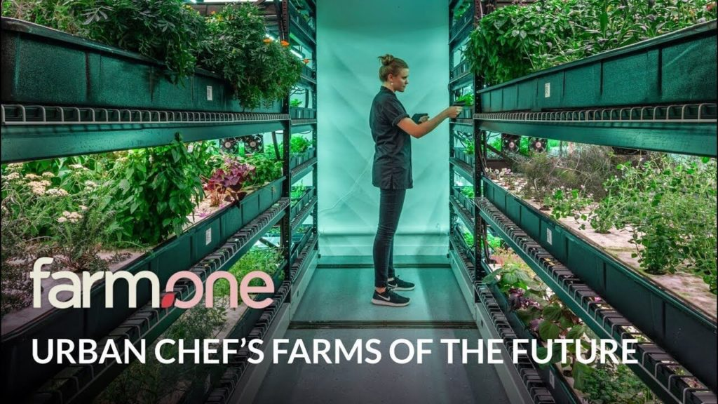 Farm One - Urban Farm of the Future