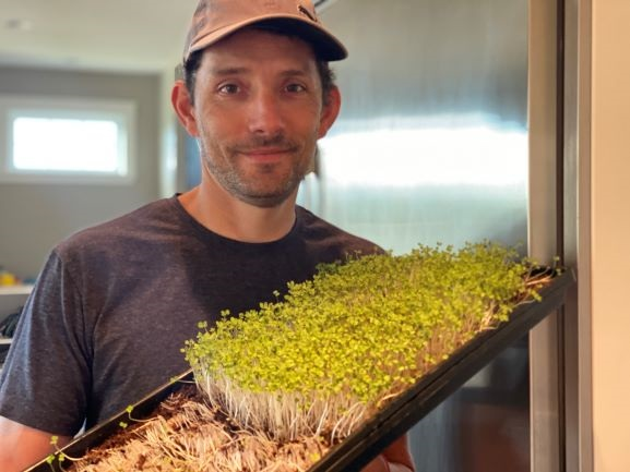 Matus Toth, founder of Microleaf Greens
