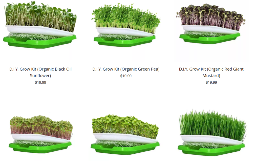 DIY Growing Kits by Philly Microgreens