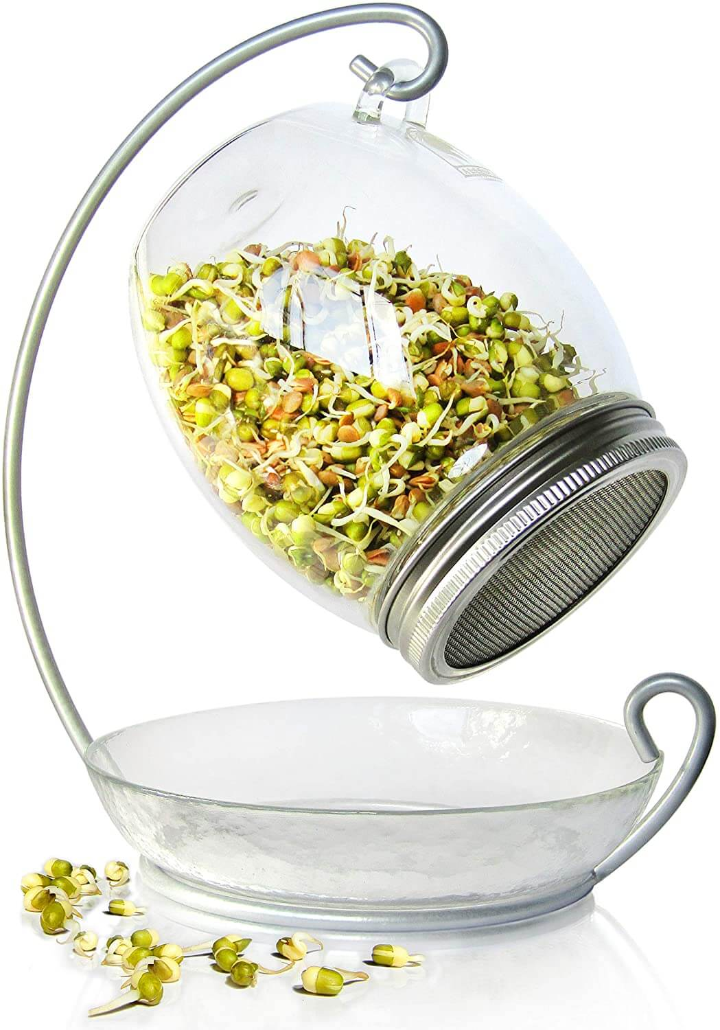 sprouting jars 2