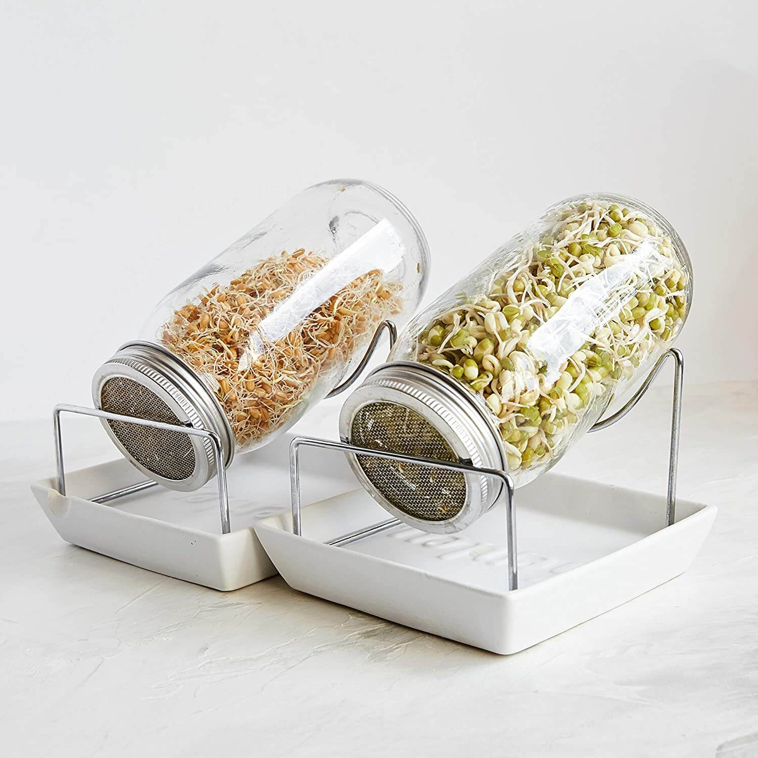 sprouting jars 3