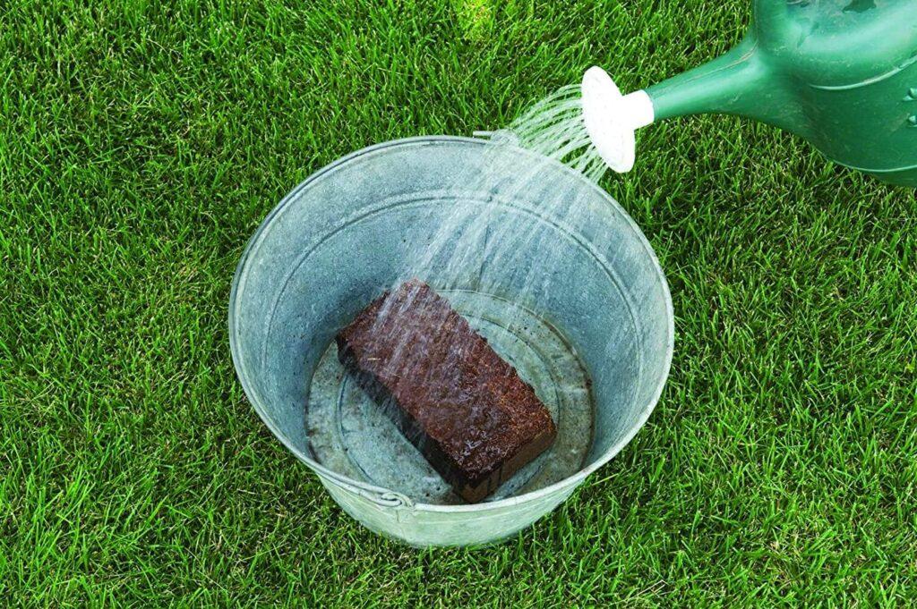 Burpee 8 qt Organic Coir Compressed Seed Starting Mix 1-Brick for Microgreens - ready