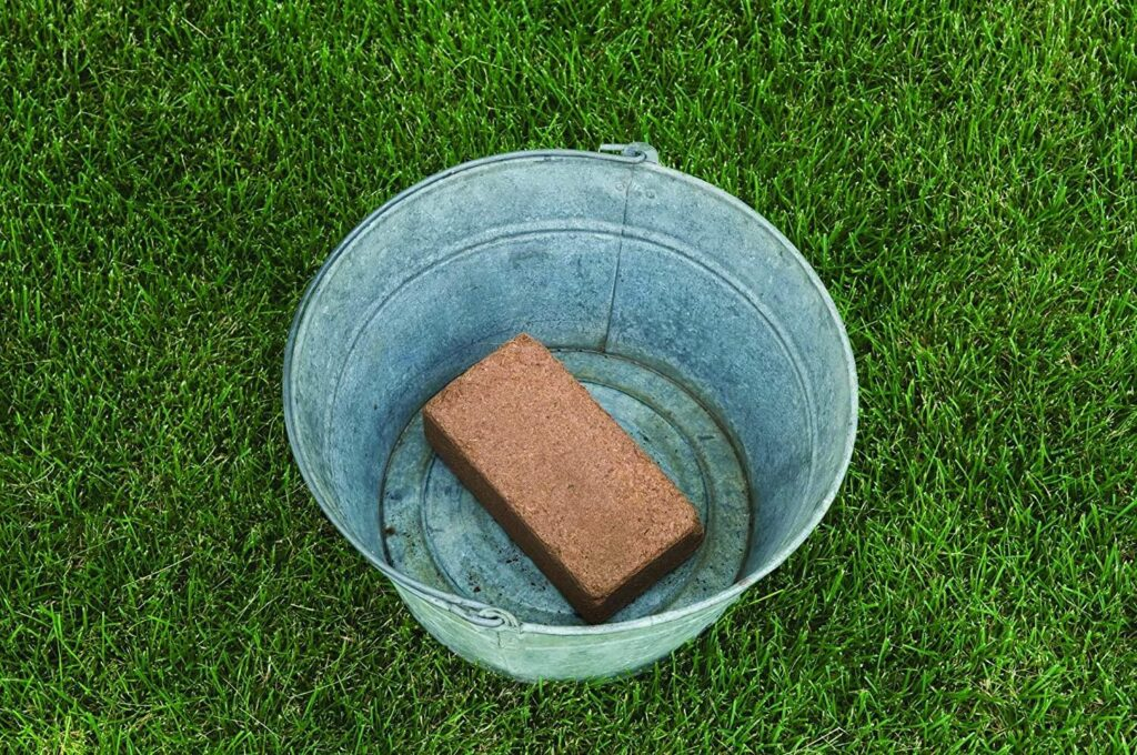 Burpee 8 qt Organic Coir Compressed Seed Starting Mix 1-Brick for Microgreens in a bucket